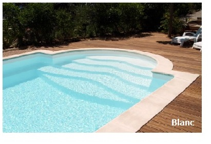 Piscine de bassens carbon blanc piscine richard bozon for Couleur liner piscine blanc